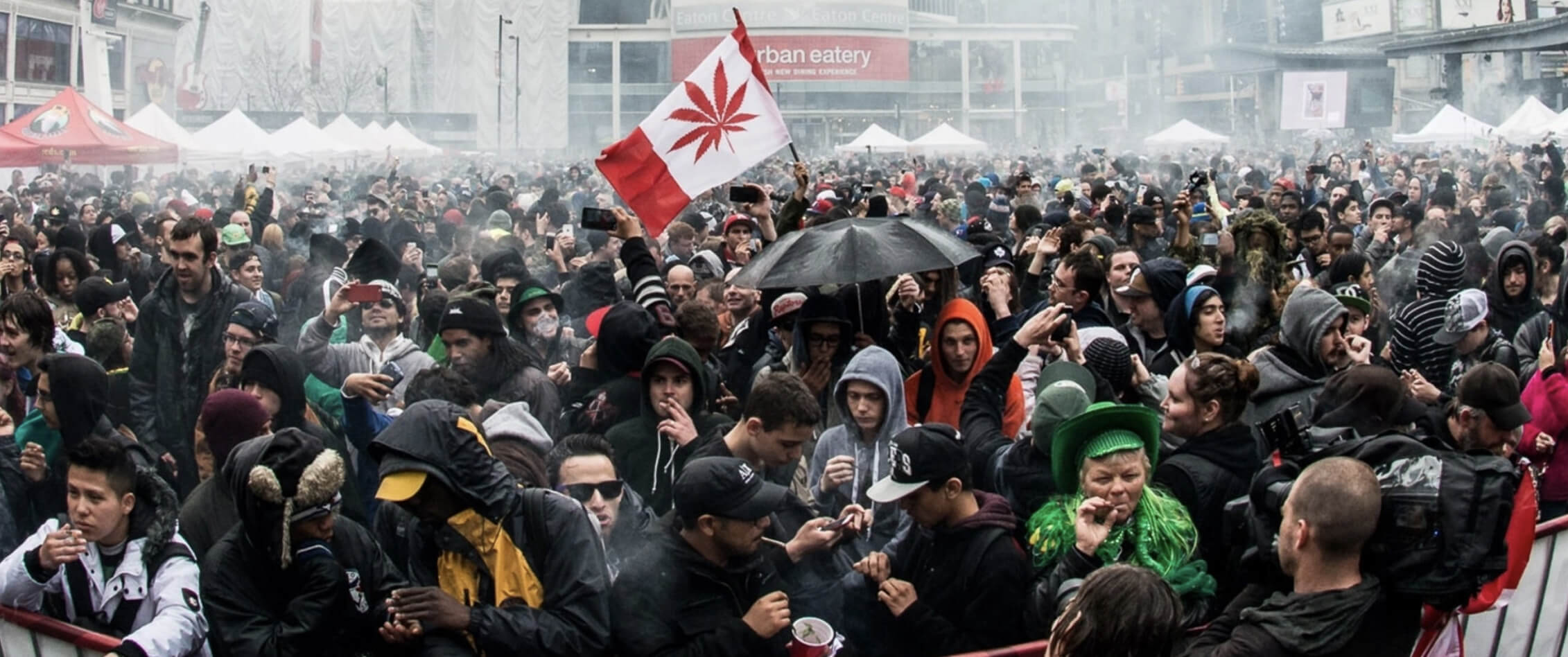420celebration - What did 15000 Calgarians have to say about legalizing marijuana?