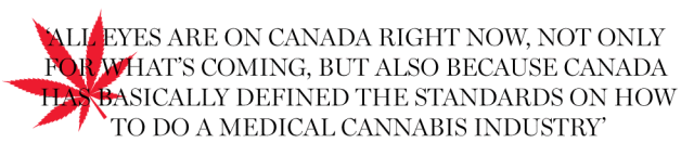 canadas marijuana heavyweights set sights on the ultimate prize conquering the world 1 - Canada's marijuana heavyweights set sights on the ultimate prize: Conquering the world