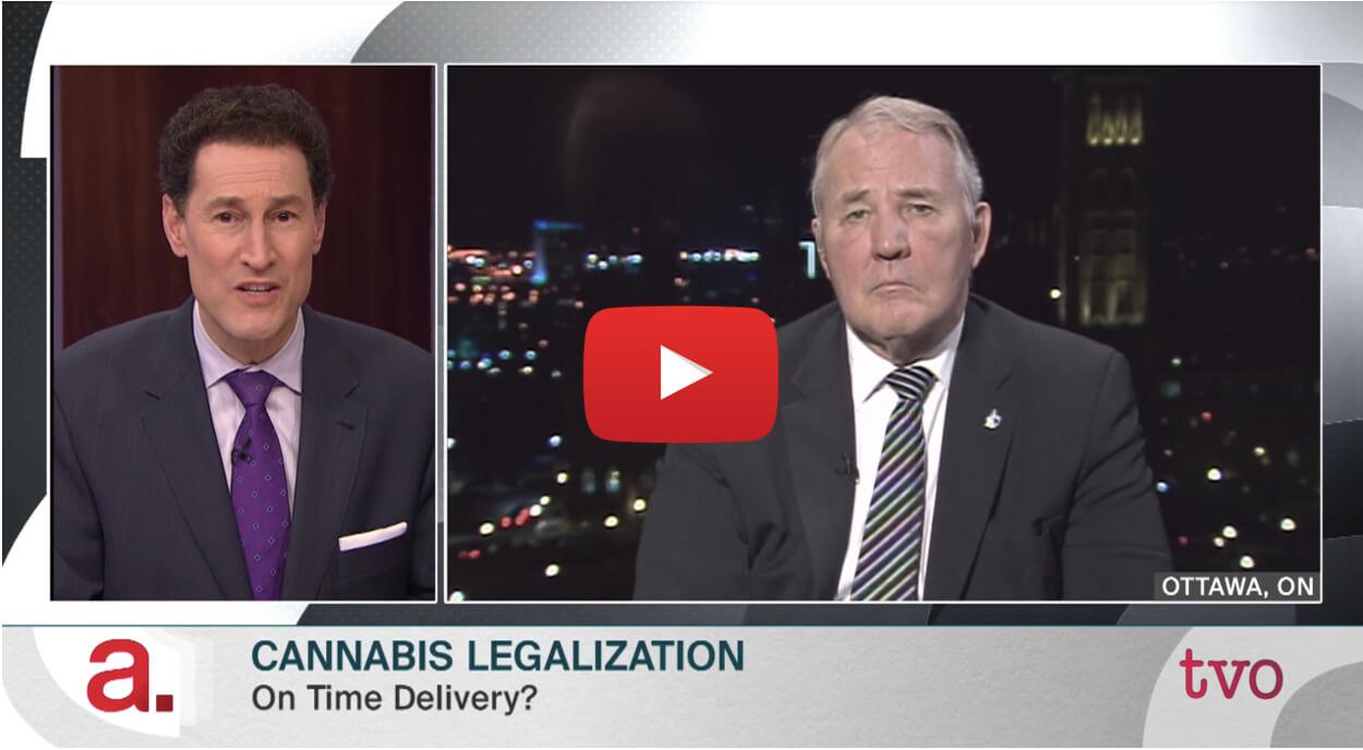 steve paikin feb2018 video1 - Watch: TVO's Steve Paikin talks all things marijuana. Cannabis Legalization, Investigating Pot Laws, The Business of Pot