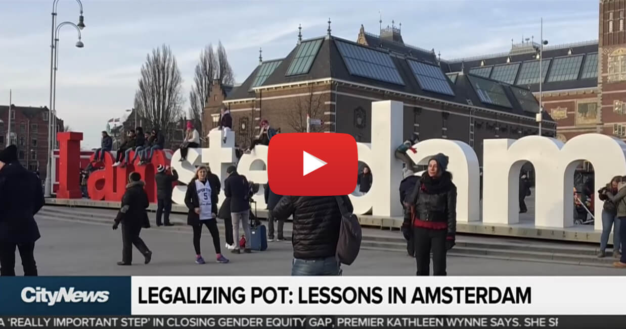 canada learn amsterdam video - What can Canada learn from Amsterdam ahead of marijuana legalization?