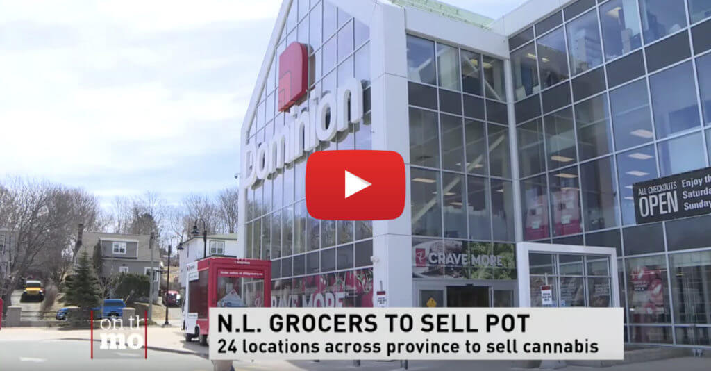 pot sold grocery stores newfoundland video 1024x534 - Pot to be sold in grocery stores in Newfoundland and Labrador, missed opportunity says CFIB