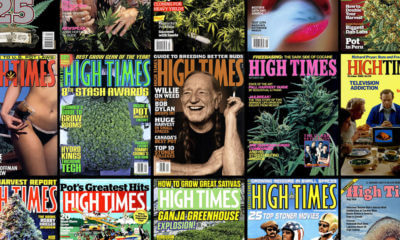 high times trying compete featured 400x240 - Struggling.. High Times magazine seeks revival in crowded marijuana publishing industry