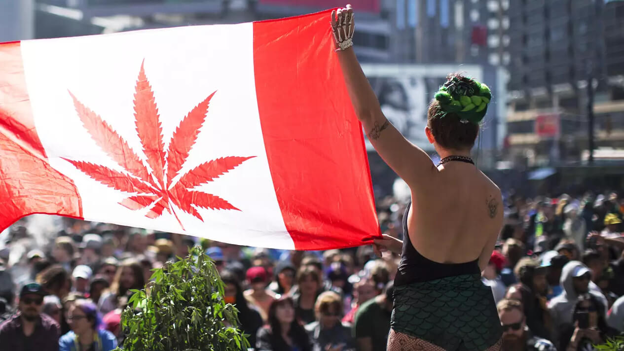 canada largest country legalize weed 1 - 109 legal marijuana shops open Wednesday, Canada set to become largest country with legal pot sales