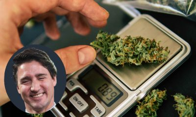 is government shorting us featured 400x240 - Watch: Is the Canadian government ripping us off? Light weed counts, get your scales out!