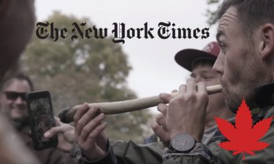 new york times canada weed featured 400x240 - The New York Times - Inside Canada's New Weed Economy: Meet the Winners and Losers