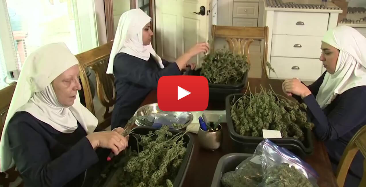 nuns sell weeed video - These Nuns Sell $60k Worth Of Medical Marijuana Every Month