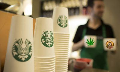 starbucks says no cannabis featured 400x240 - Just Expensive Coffee: CEO Kevin Johnson confirms Starbucks not joining the cannabis space