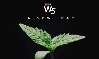 w5 new leaf feature 400x240 - W5: Finding opportunities in the growing Canadian marijuana industry