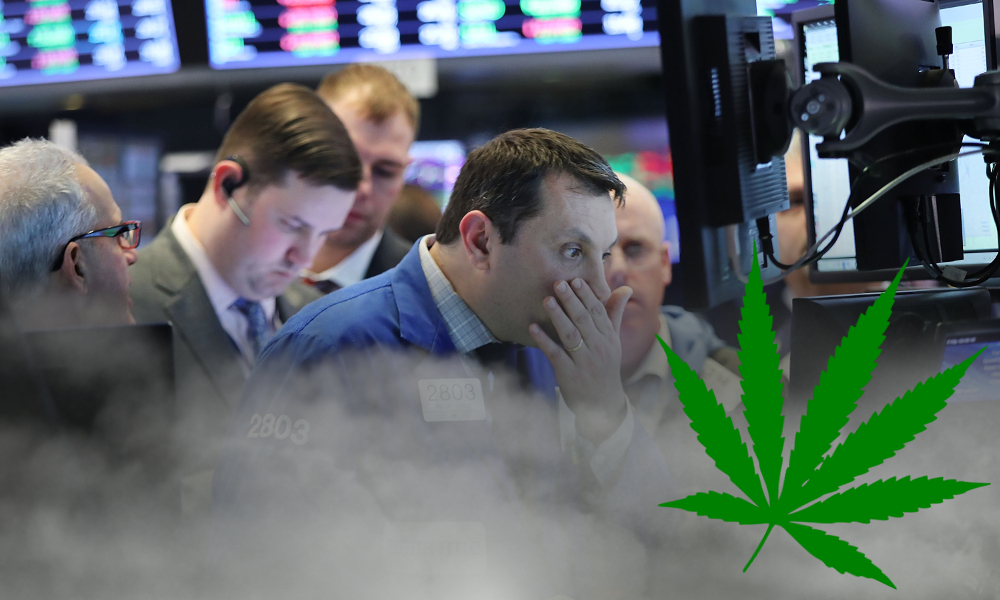 CB1 capital cannabis dot com bubble featured - CB1 Capital Todd Harrison: Parallels Between Cannabis And The Dot-Com Bubble