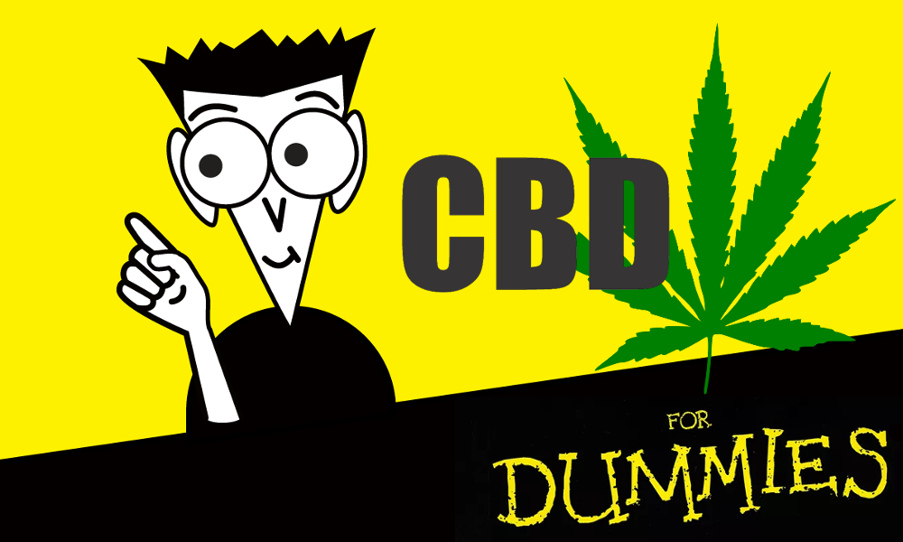 cbd for dummies featured - CBD for Dummies. Claims that CBD cures just about everything, but what's the truth?