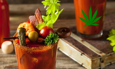 marijuana caesar featured 400x240 - Canadian Classic THCaesar: How to make the perfect marijuana caesar. Don't forget the Clamato!