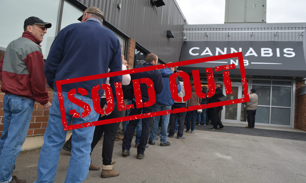 layoffs cannabis nb featured - No weed to sell. Major round of layoffs at Cannabis NB after 12 weeks in business. 60 jobs lost