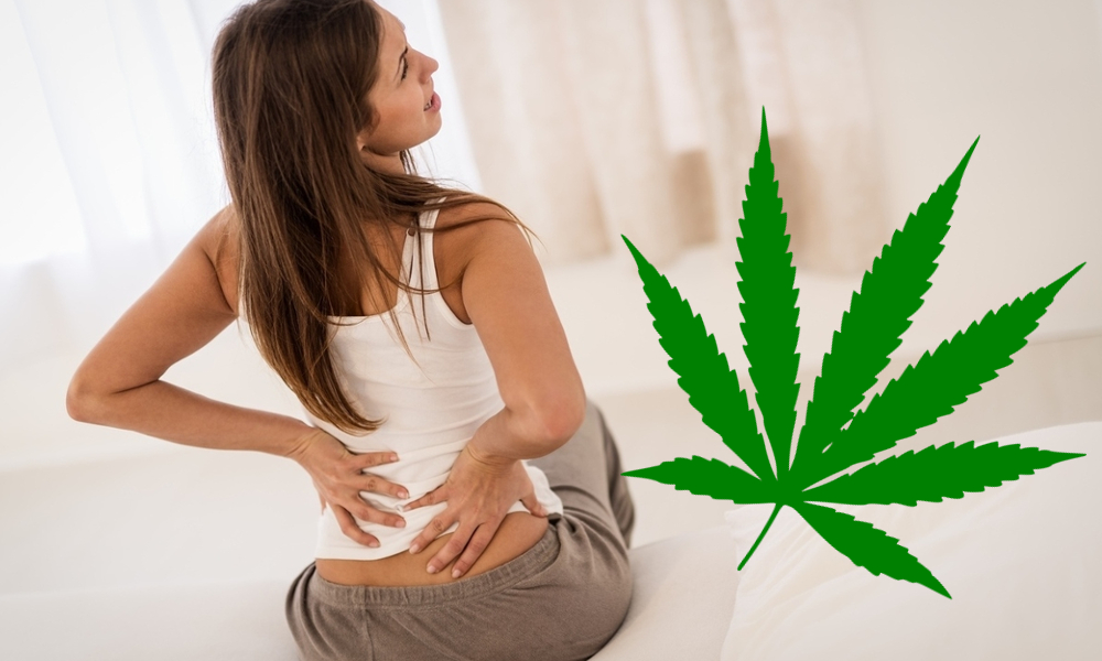 make cannabis pain ointment featured - How to Make Cannabis Topical CBD Pain Relief Cream, DIY Arthritis Balm Lotion that works!