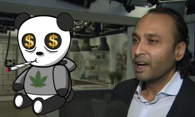 meet ontario pot lottery winner featured 400x240 - Meet one of the 25 winners for Ontario Cannabis Retail Licence. Admits knows NOTHING about weed!