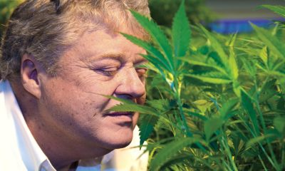 vic neufeld stepping down featured 400x240 - Aphria CEO Vic Neufeld steps down as earnings fail to meet analysts' expectations