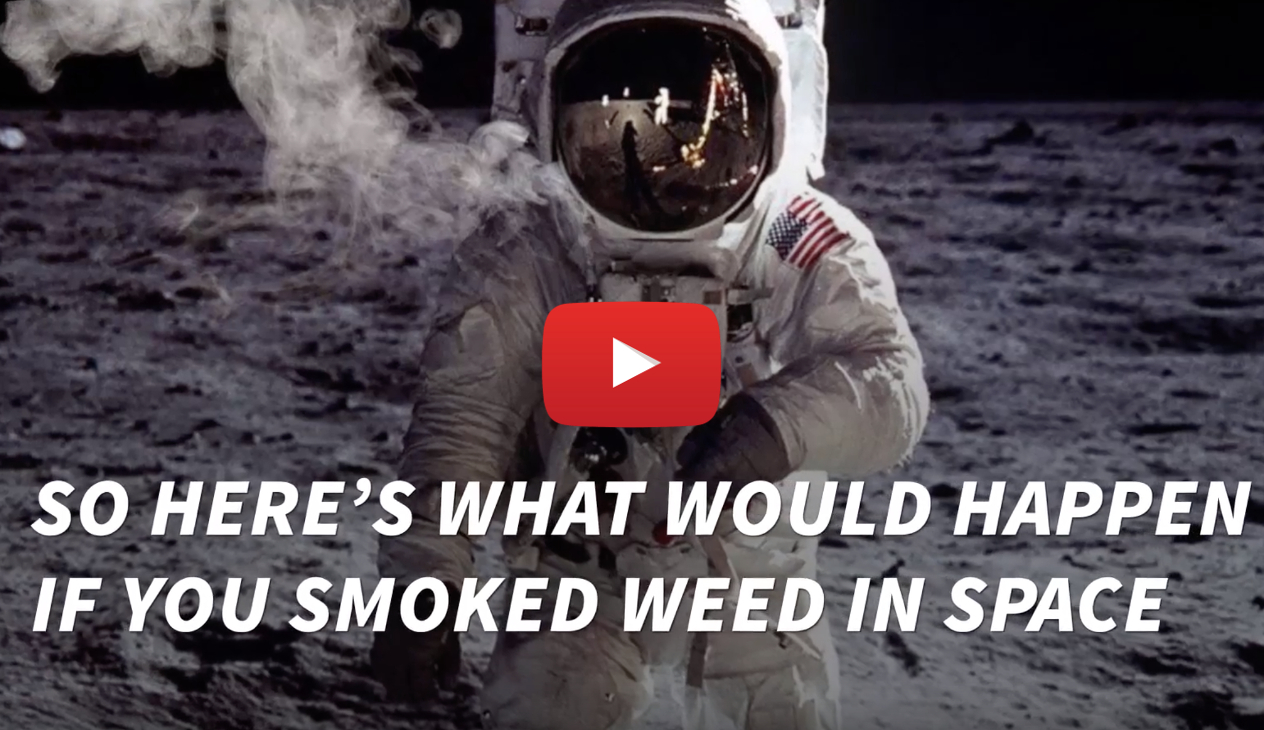 can you get high in space video - Captain Kirk wants to know! What Happens If You Smoked Weed In Space?