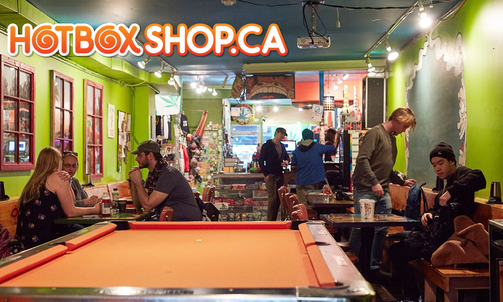 Abi Roach's Hotbox – Oldest Cannabis Lounge in Toronto and maybe North America