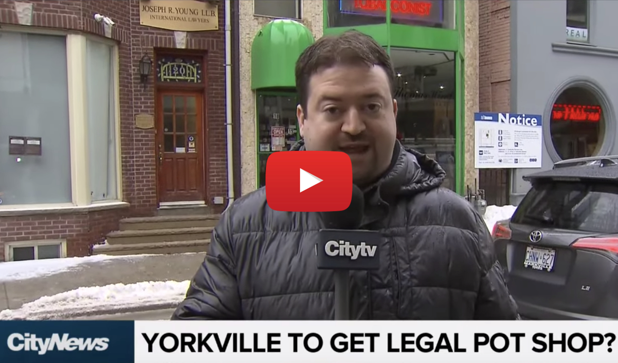 yorkville gets pot shop video - There goes the neighbourhood! Toronto's first retail pot shop will open in Yorkville