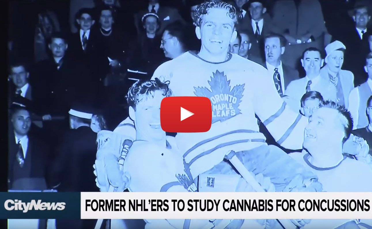 nhl concussions cannabis video - NHL Alumni Association partners with Canopy Growth for CBD concussion study