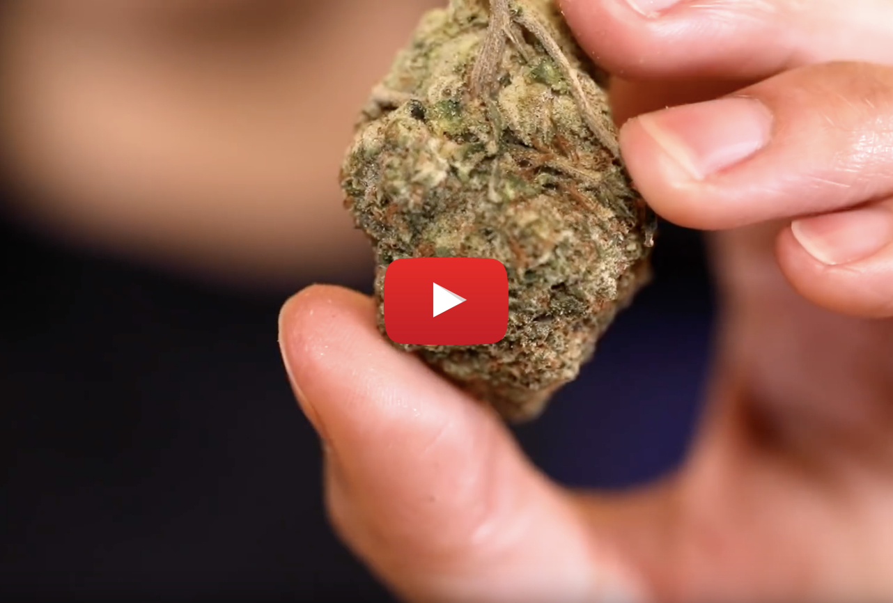 pineapple express strain video - Made in Hollywood. The history of Pineapple Express weed strain
