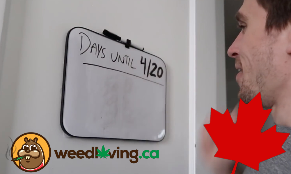 Celebrating our first legal 4/20 in Canada! Are you ready to smoke some weed?