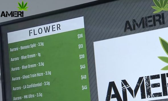 Toronto's second legal pot shop Ameri opens in Yorkville today