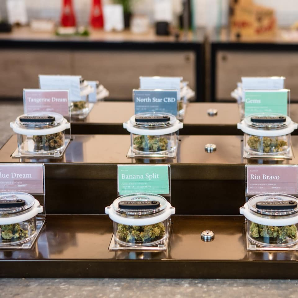 How much money did Ontario cannabis stores make opening day