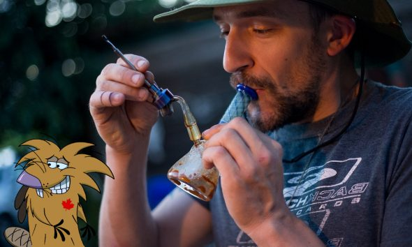 support legal pot down featured2 590x354 - Say what? Canadian support for cannabis and edibles has declined since legalization