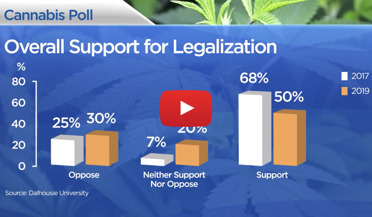 support legal pot down video - Say what? Canadian support for cannabis and edibles has declined since legalization