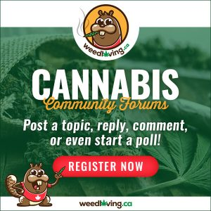 WeedLoving 600x600 300x300 - Top 15 CBD Topicals in Canada 2021 - Balms, Creams, Lotions & More