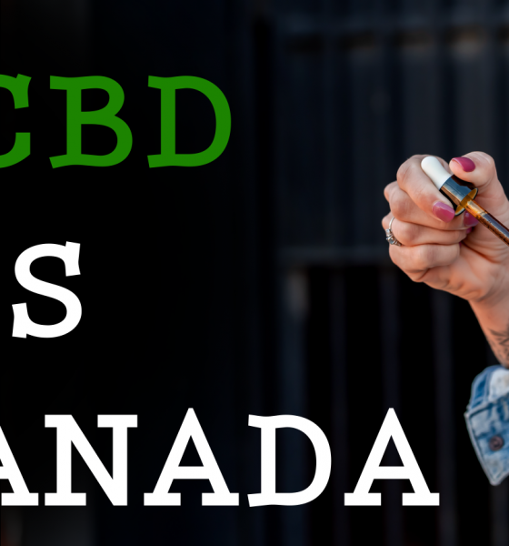 top cbd shops canada 00000 560x600 - Top 15 Online CBD Shops and Dispensaries in Canada 2019