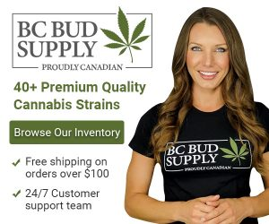 weedloving banner 600x500 1 300x250 - BMO open to more marijuana deals if firms can pass all the bank's tests: CEO