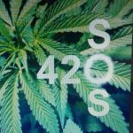 420sos 379 - WeedLoving.ca - Canadian Cannabis and Mail Order Marijuana Forums
